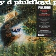 A Saucerful Of Secrets (180g)