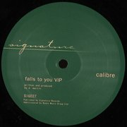 Falls To You VIP / End Of Meaning