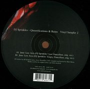 Queerifications & Ruins Vinyl Sampler 2