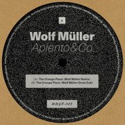 The Orange Place (Wolf Muller Remixes)