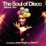 The Soul Of Disco Vol. 2 (Record Store Day 2017)