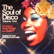 The Soul Of Disco Volume One