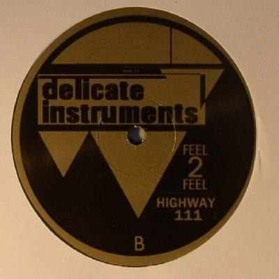 Delicate Instruments EP