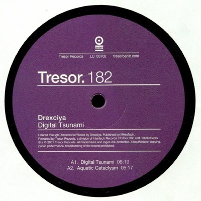 Digital Tsunami (reissue)