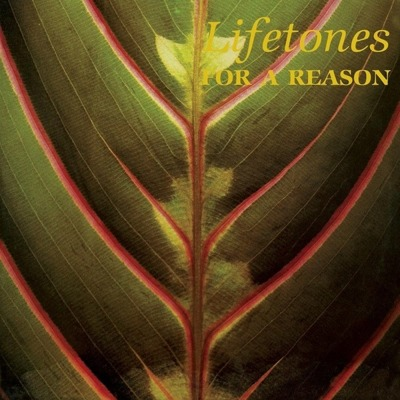 For A Reason (gatefold)
