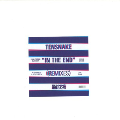 In The End Remixes
