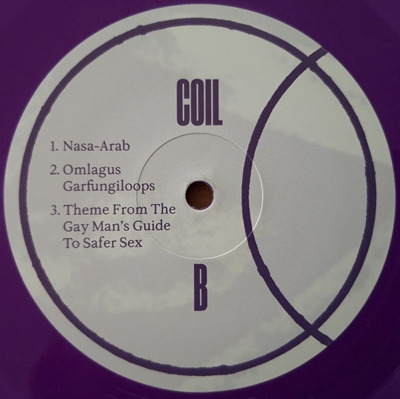 The Gay Man's Guide To Safer Sex +2 (purple vinyl)
